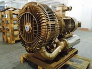 30kw High Pressure Regenerative Air Blower For Biogas Conveying Anti Explosion