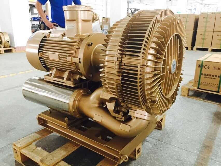 22kw Explosion Proof Vacuum Pump High Pressure With SIEMENS ATEX Motor